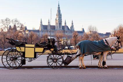 Vienna city center